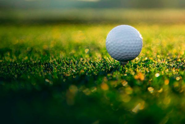 golf salici pallina